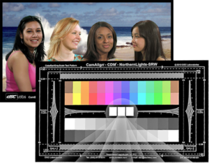 Specialist and Skin Tone Charts